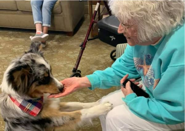 A resident smiling and petting a visiting therapy dog in Maple Grove, Minnesota.