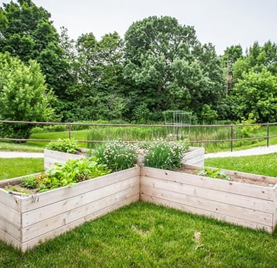 Beautiful raised gardens surrounded by a walking path.