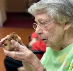 Senior woman holding a baby chick at a senior living community in Springfield, Missouri.