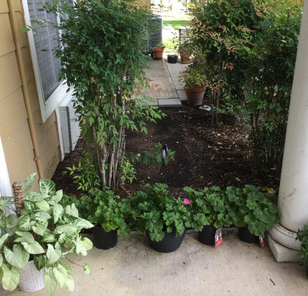 Garden area at a senior living facility in San Antonio, Texas.