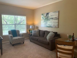Living room in a senior living community with couches and oversized window.